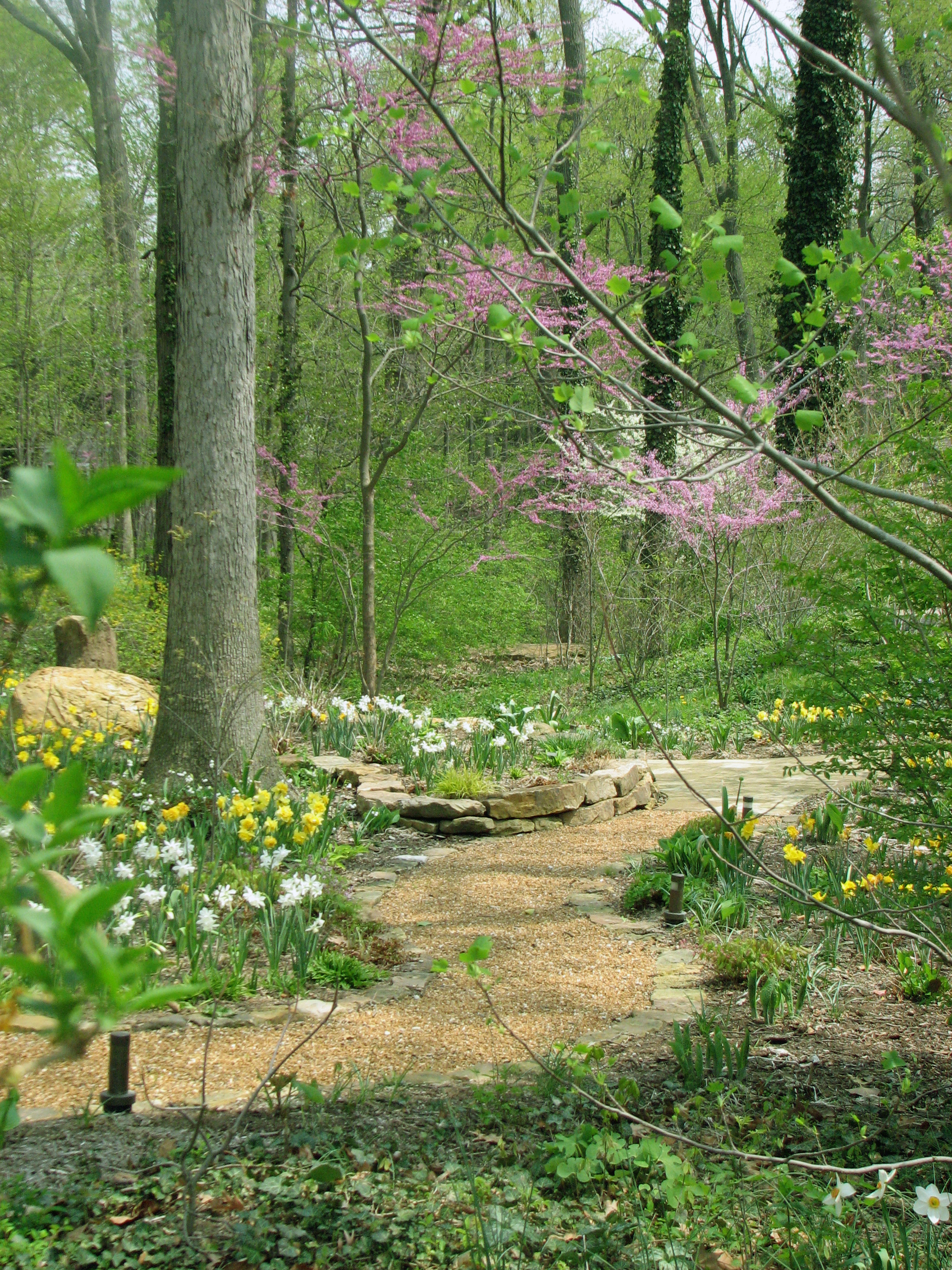 Woodland gardens indianapolis for Landscaping your garden