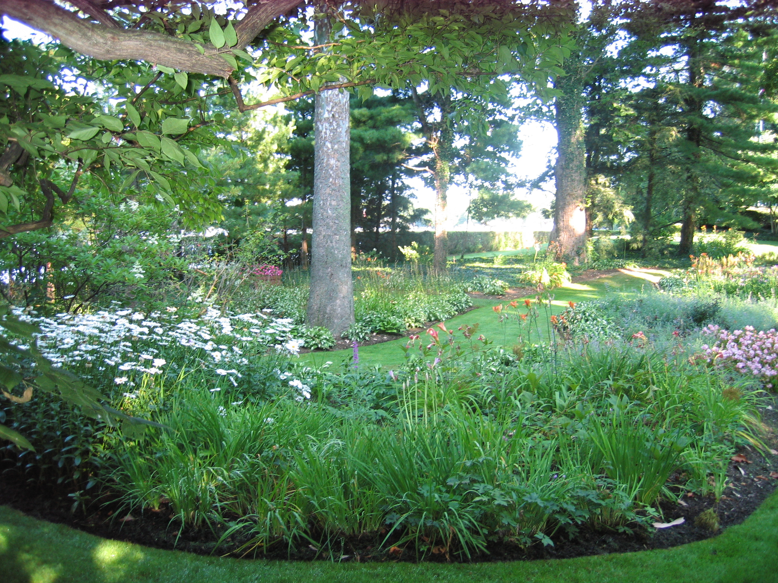 Low maintenance gardens indianapolis for Low maintenance garden
