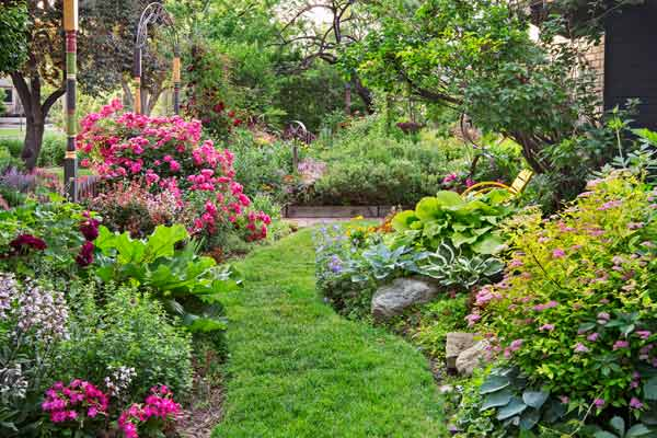 The plants that keep on giving for Free perennial flower garden designs