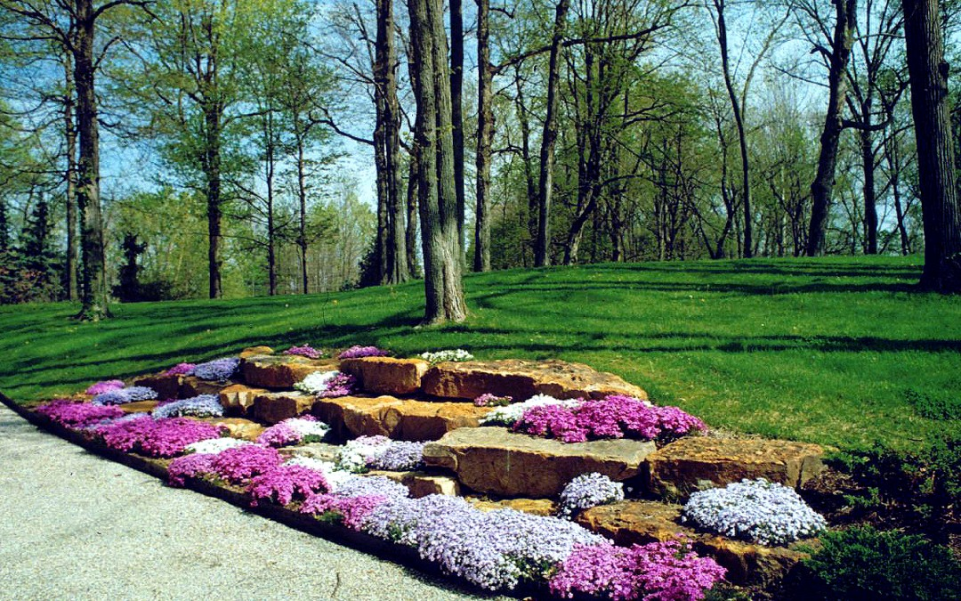 Get Your Landscaping Year Off To A Great Start!