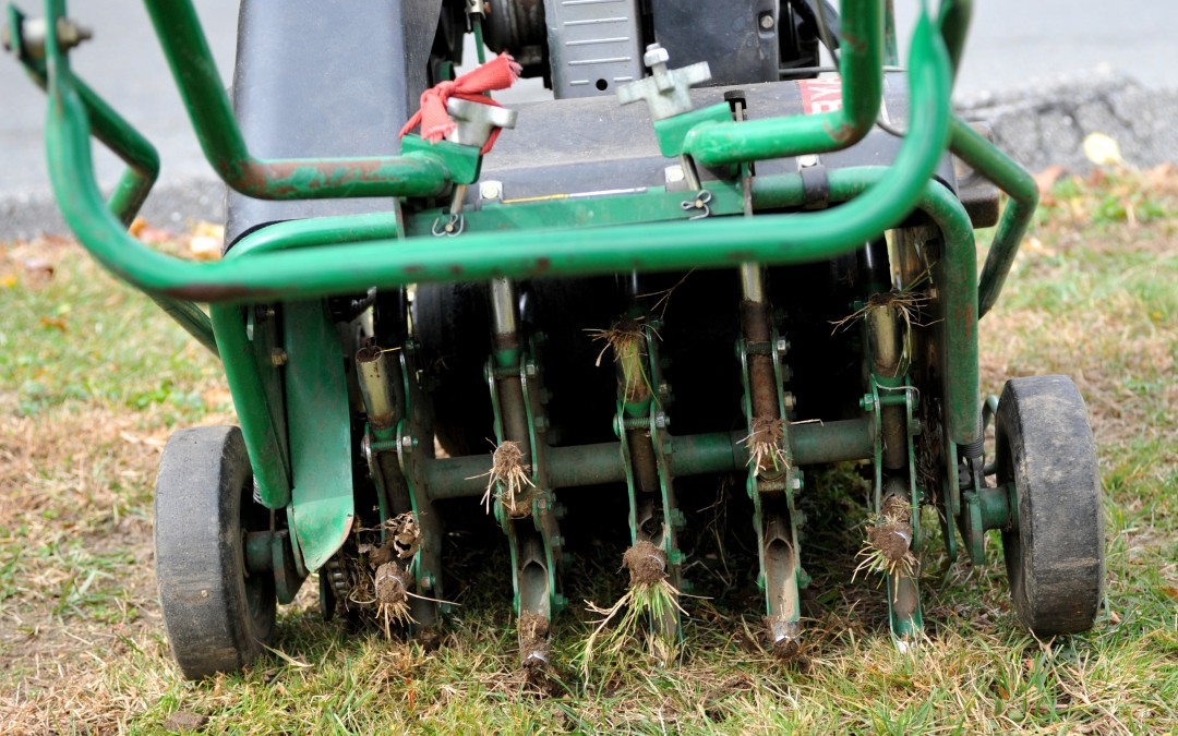 Core Aerate and Slice Seed Your Lawn Right Now!