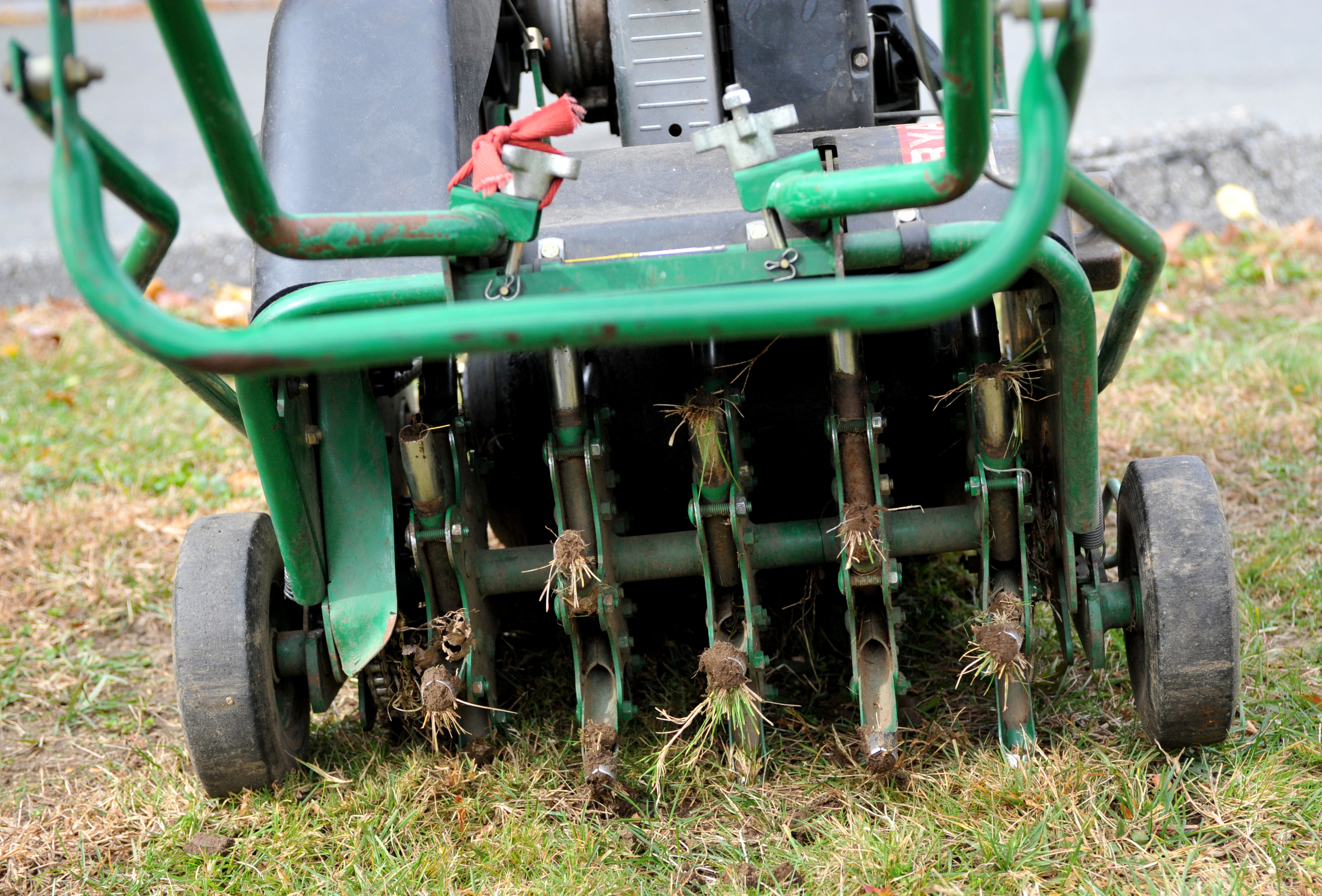 Core Aerate And Slice Seed Your Lawn